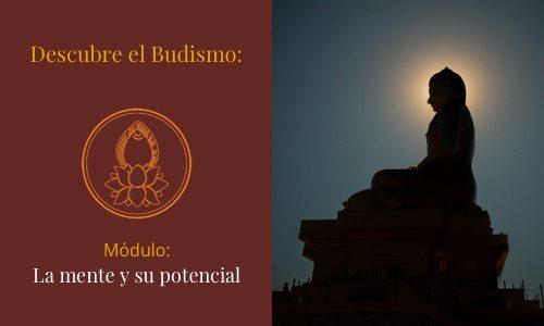 Descubre el Budismo: La mente y su potencial