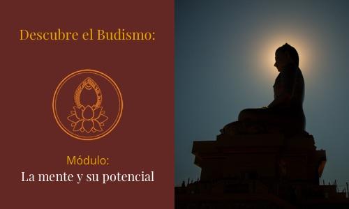 descubre-budismo-mente-potencial