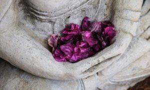 meditacion-calma-mental-enseñanzas