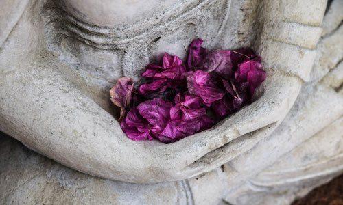 Meditación en la Atención Plena y Cultivar la Compasión