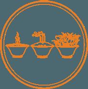 establecer_practica_diaria